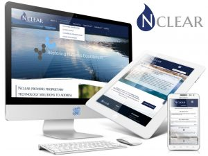 Nclear Chemical Engineering