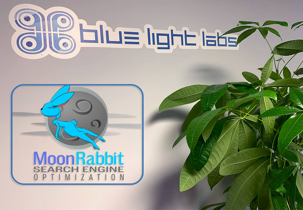 Moon Rabbit - Internet Marketing Introduction